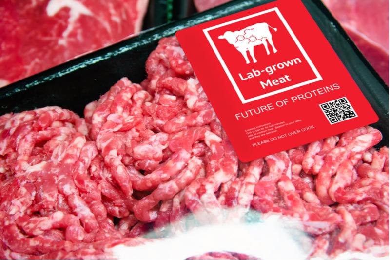 Lab-grown-meat.jpg