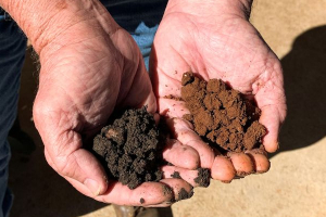 Soil%20difference%20300x200.jpg