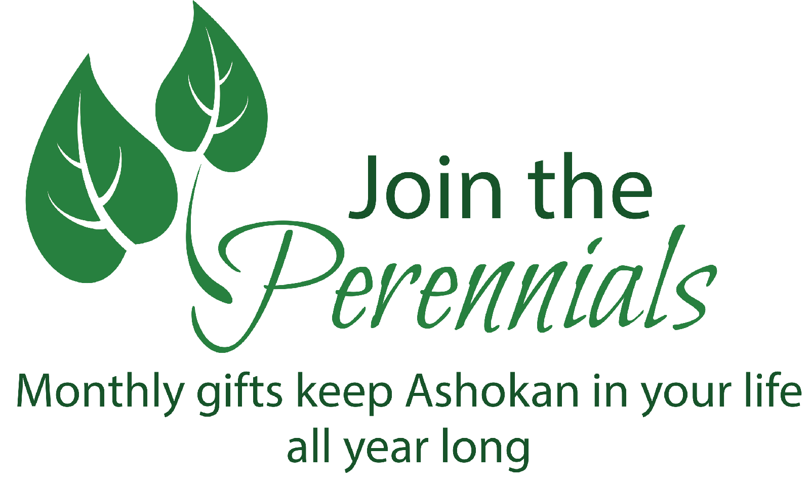 JOIN THE PERENNIALS