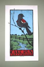 Cane Run Watershed *Limited Print!*