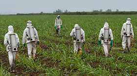 Farmers spraying herbicide