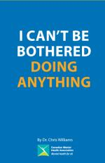 I Can't Be Bothered Doing Anything (Youth)