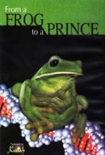 From a Frog to a Prince