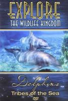 Dolphins Tribes of the Sea
