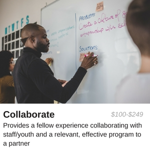$100-$250 provides a fellow experience collaborating with staff/youth and a relevant, effective program to a partner