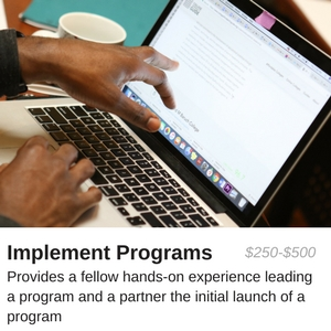 $250-$500 provides a fellow hands-on experience leading a program and a partner the initial launch of a program