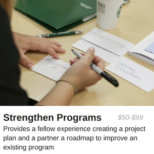 $50-$99 provides a fellow experience creating a project plan and a partner a roadmap to improve an existing program