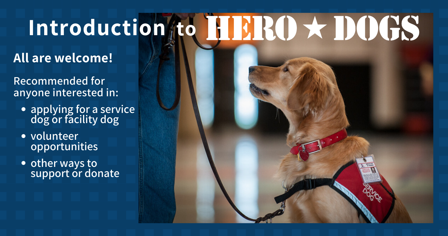 Introduction to Hero Dogs Image