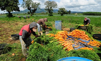 Photo courtesy of Maria Fleischman/World Bank