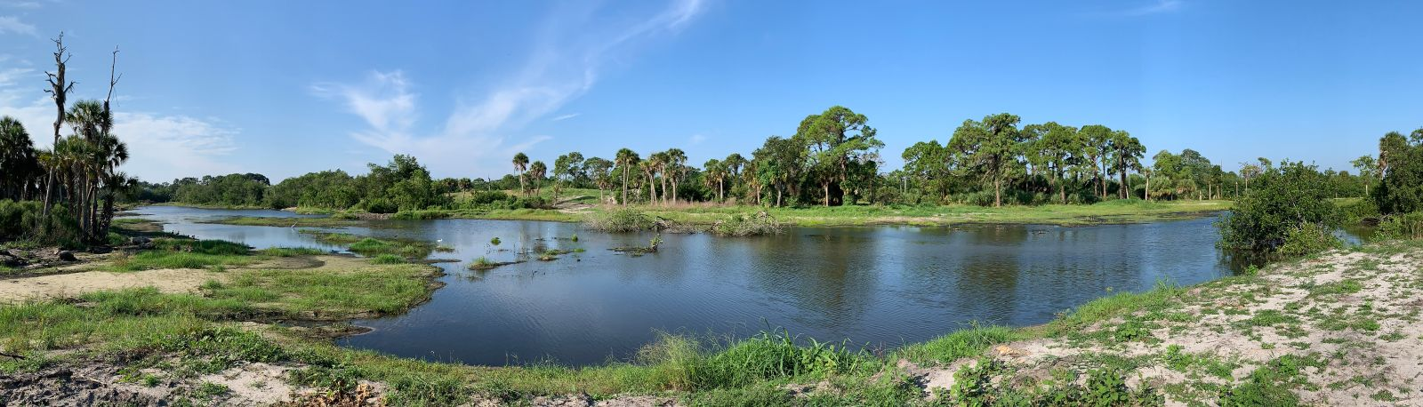 Wide-angle Photo of the New Lemon Creek Wetlands