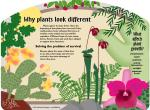 Garden Sign - Why Plants Look Different - PDF down