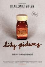 Dirty Pictures (DVD)