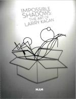 Impossible Shadows: The Art of Larry Kagan
