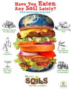 Poster - Healthy Soils Are Full of Life!