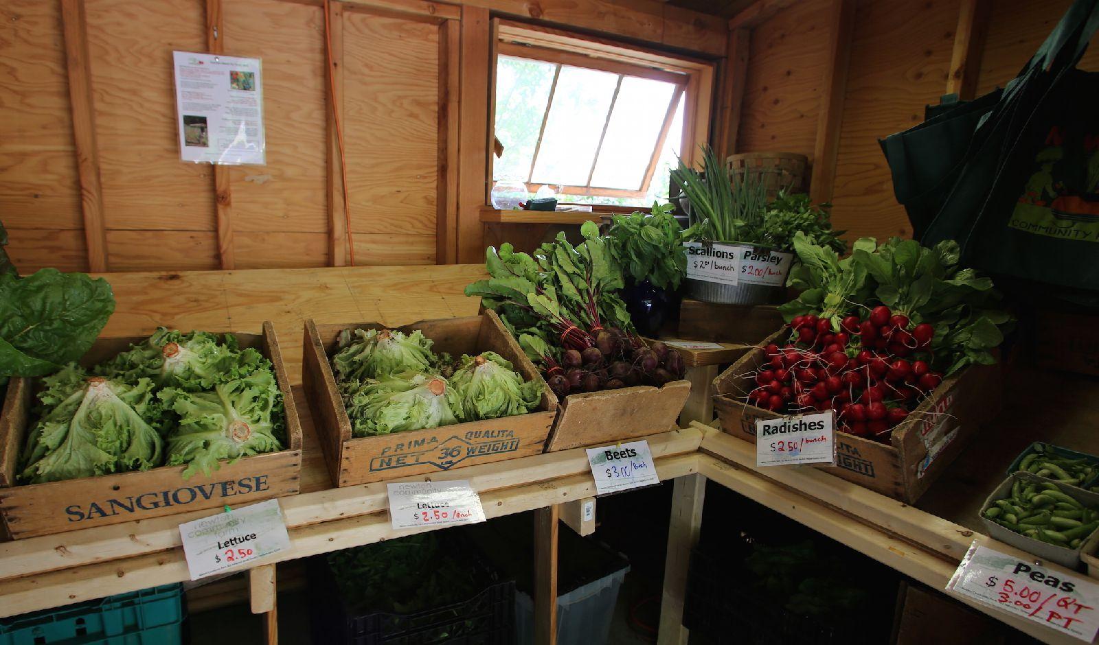 Farm_stand_produce_6-20-15.JPG