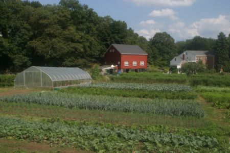 September_farm_9_12.jpg