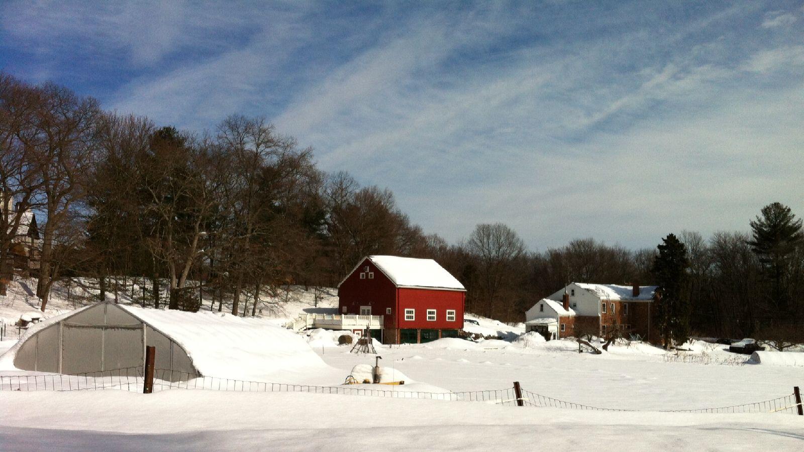 Snowy_farm_2_15.jpg