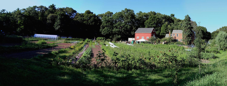 farm_pano_hi_rez_8_15.JPG