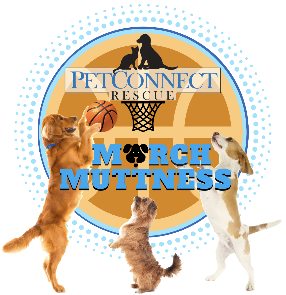 PetConnect Rescue - March Muttness @ Seven Locks Brewery | North Bethesda | Maryland | United States