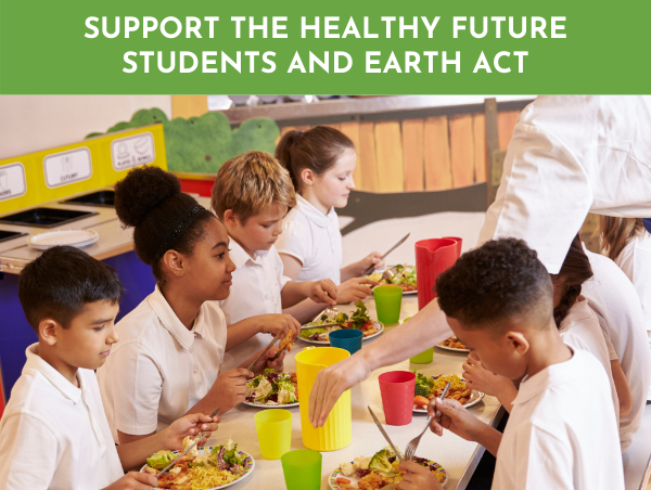 Support%20Healthy%20Future%20Students.png
