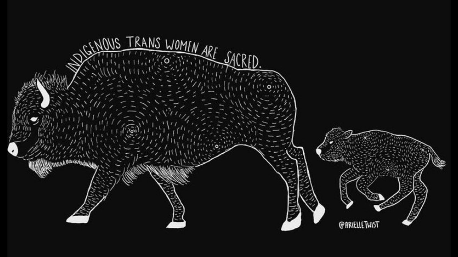 A white illustration of a buffalo mother and calf on a black background, by artist Arielle Twist. Words trailing down the buffalo's back read Indigenous Trans Women Are Sacred.