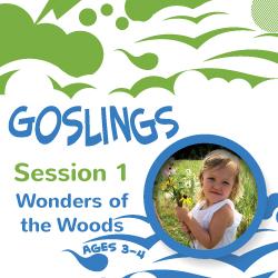 Goslings 1