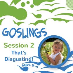Goslings 2