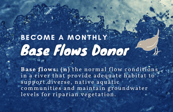 Base%20Flows%20Donor.png