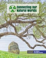 SAQA - Connecting our Natural Worlds (catalog)