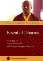 Essential Dharma MP3 (PR-02)