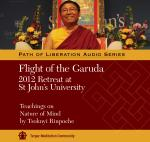 Flight of the Garuda MP3 (PR-05)