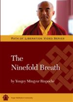 Ninefold Breath DVD (PR-17)