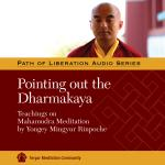 Pointing Out the Dharmakaya MP3 (PR-18)
