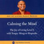 Joy of Living 1 MP3 (JR-02)
