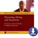 Dreaming Dying Awareness 2016 Download PR