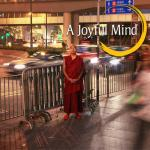 A Joyful Mind DVD (JR-11)