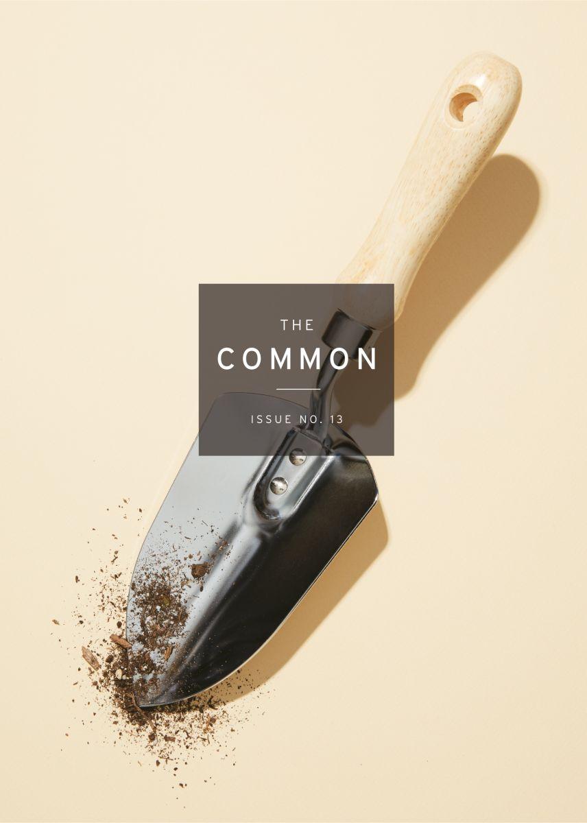 Ecotone Issue 19 Cover