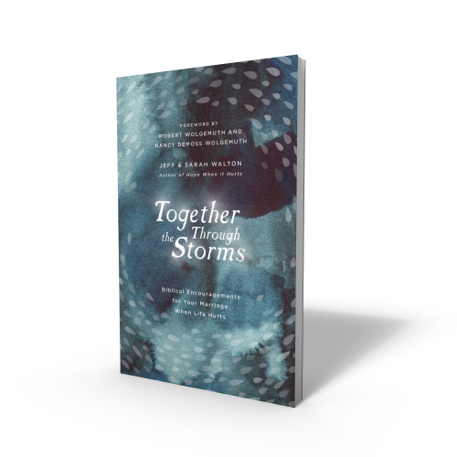Together Through the Storms book