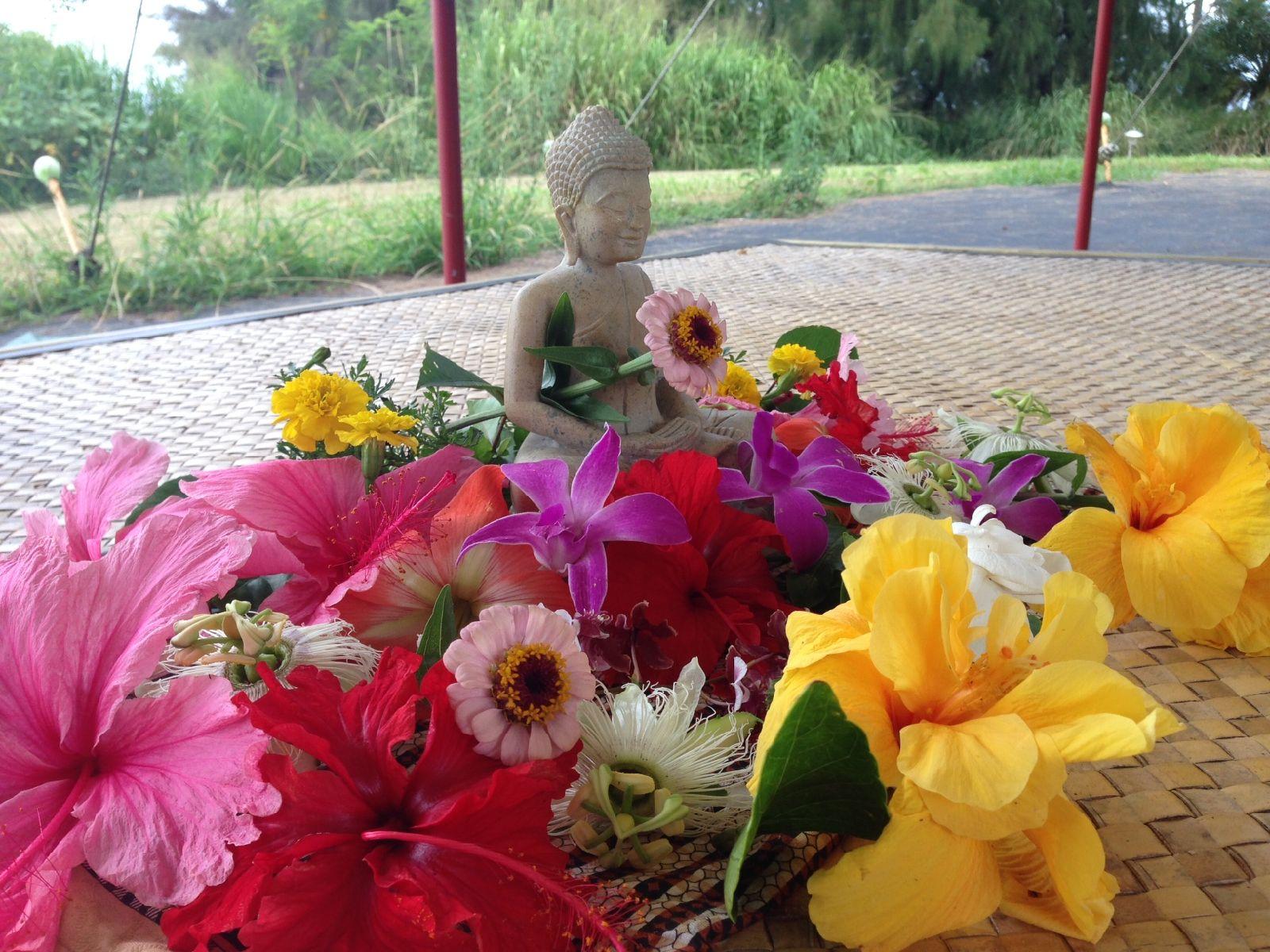 Metta Oli - The Karaniya Metta Sutta in Hawaiian @ Online